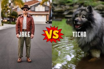 Almost Vintage Style vs Tichoblanco: The Stitchdown Bootbate